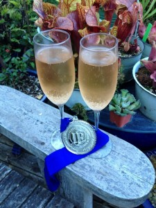 ippy champagne